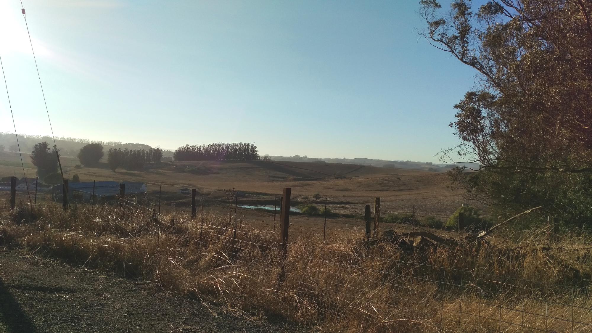 Two Rock Farmland