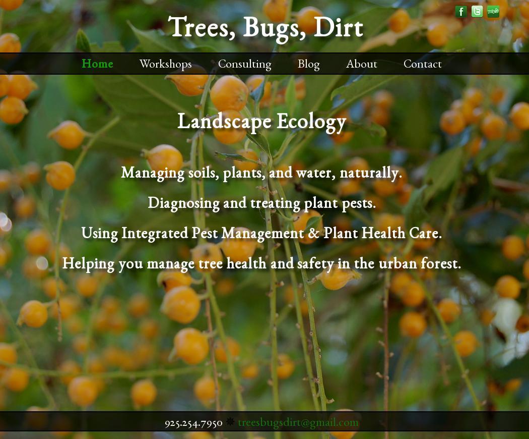 Trees Bugs Dirt
